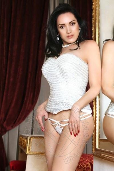 Reina Sofia  RIMINI 3478855255
